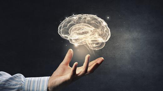 ресурсы мозга