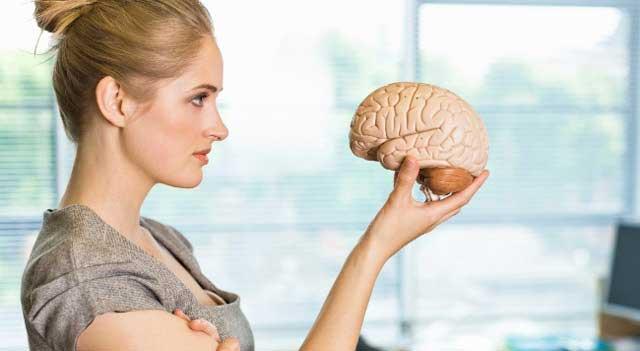 Может ли мозг работать без человека?