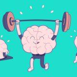 физкультура и мозг